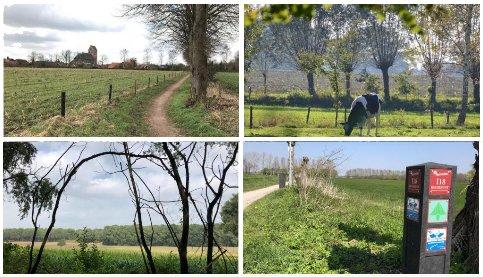wandelen-fietsen-bb-achterhoek-gelderland