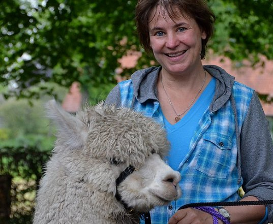 alpaca, therapiedier, veerkracht, training, workshops, coaching