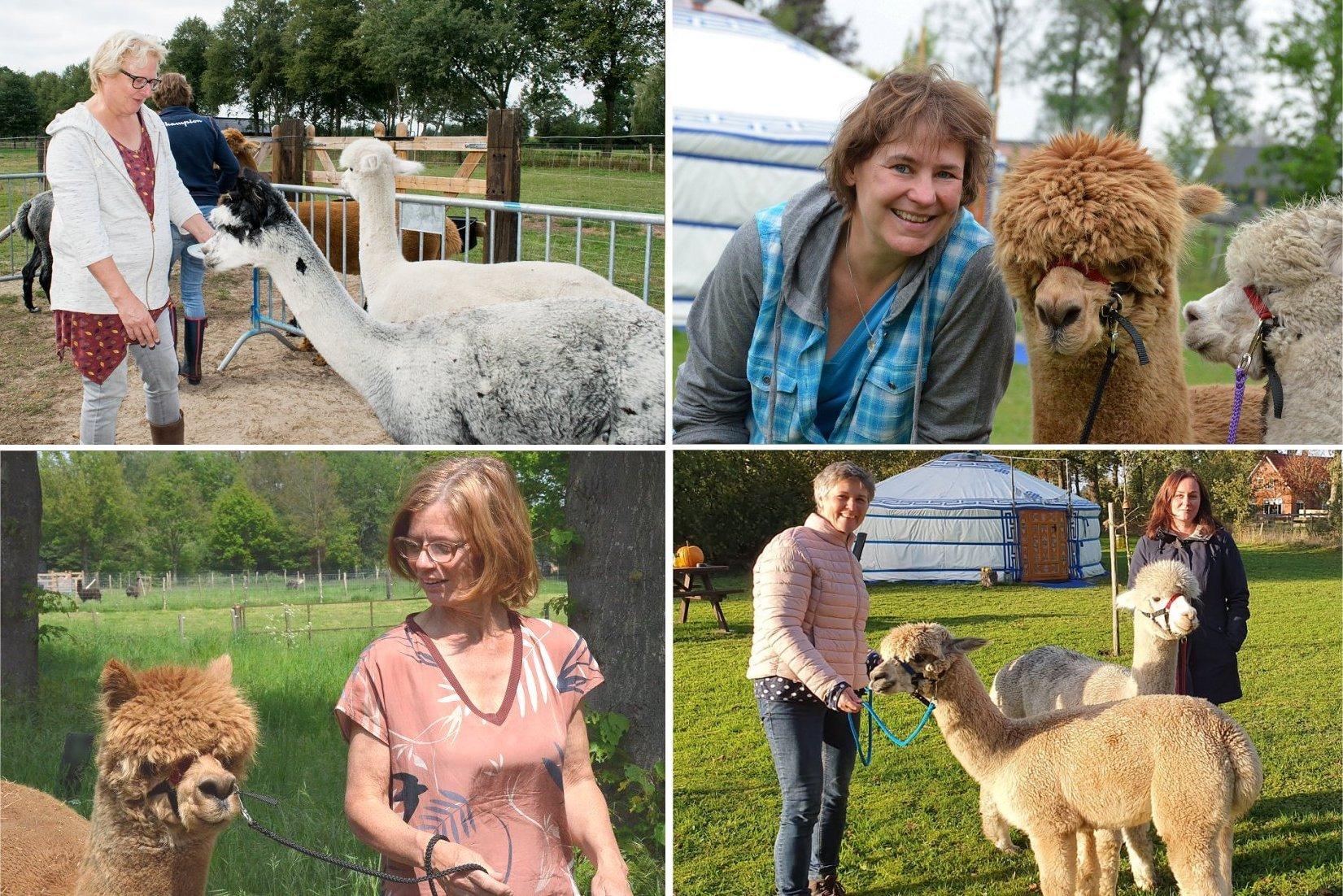 alpaca-knuffelen-wandelen-meet-greet-achterhoek-berkelland