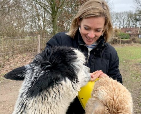 alpaca-wandelen-achterhoek-knuffelen-meet-greet-gelderland