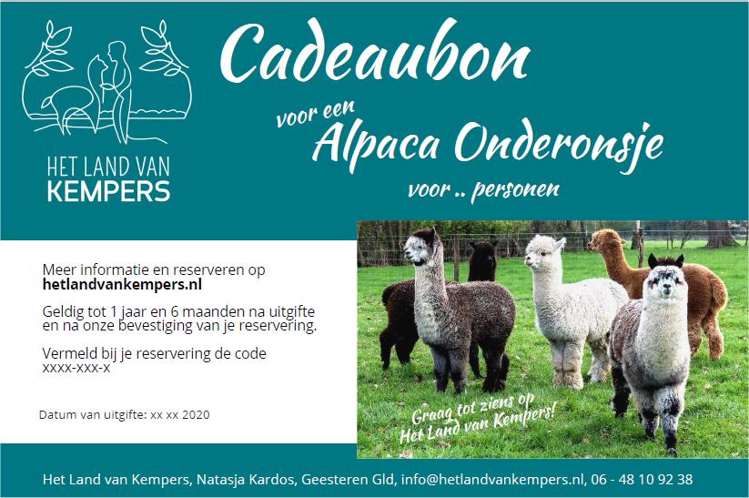 Alpaca meet and greet, Cadeaubon - Achterhoek, Gelderland