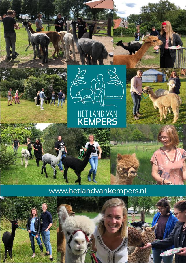 Alpaca-Achterhoek-Meet-Greet-Wandelen