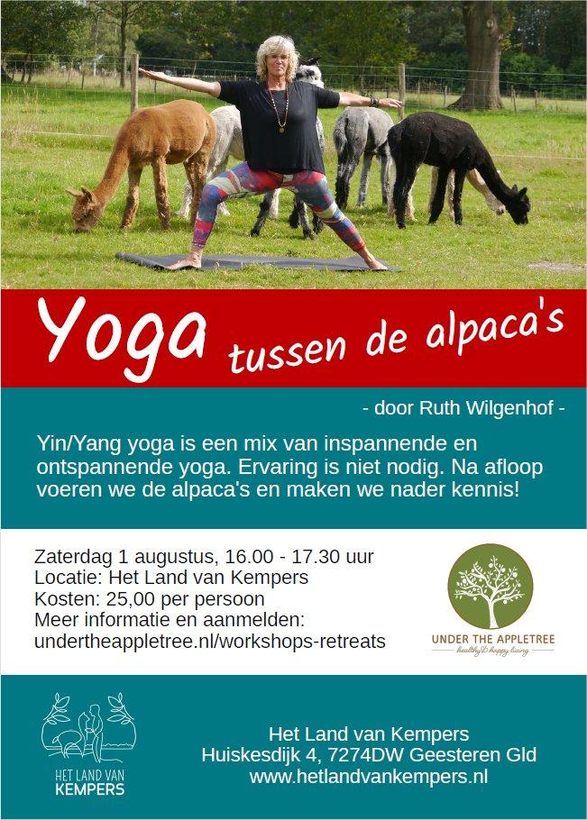 yoga tussen de alpacas, achterhoek