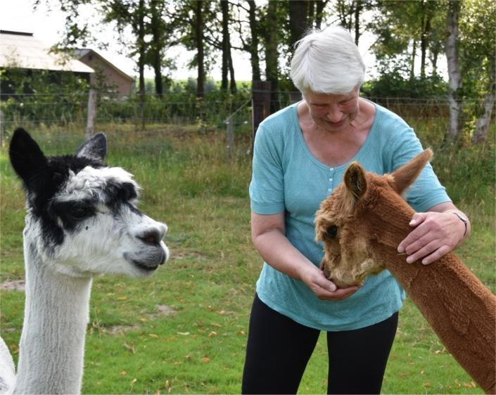 yoga-in-de-achterhoek-tussen-alpacas-gelderland
