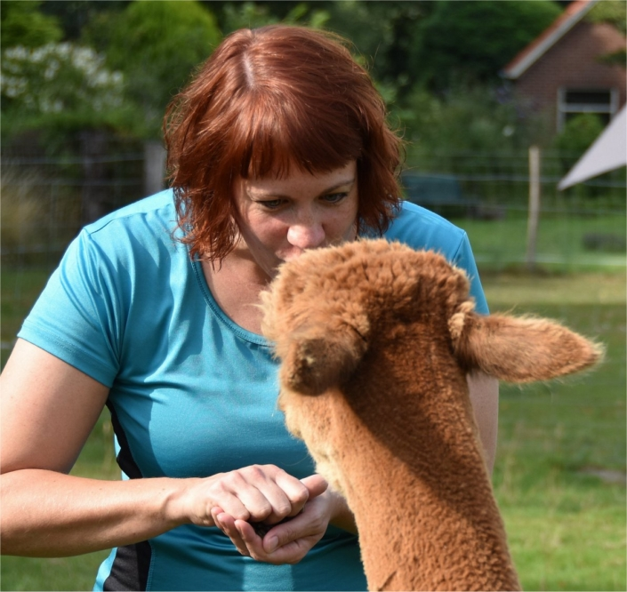 yoga-tussen-alpaca-achterhoek-gelderland