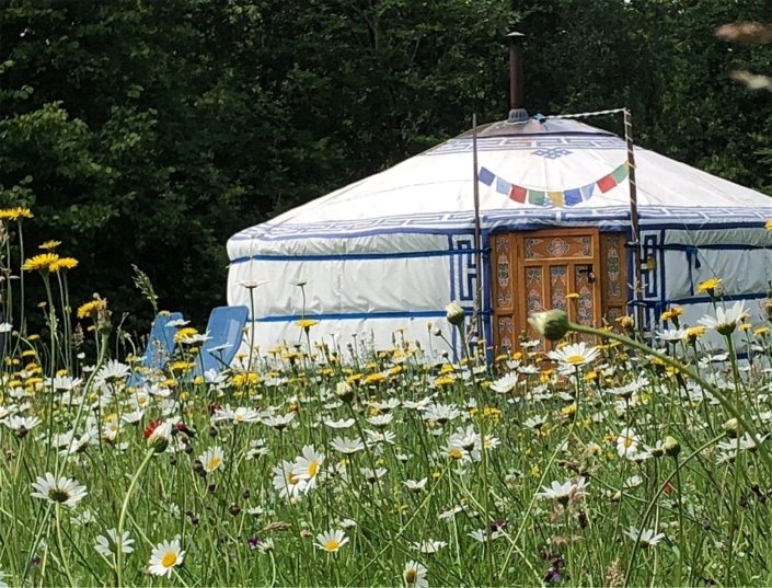 yurt-achterhoek-gelderland-bed-and-breakfast-geesteren