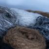 alpaca-wol-mutsen-hypoallergeen-land-van-kempers