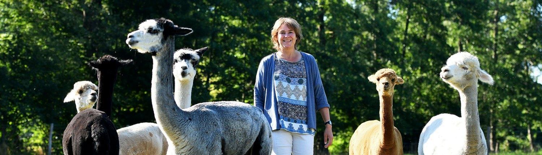 yurt-achterhoek-bijzondere-bed-and-breakfast-alpacafarm-alpaca-meet-and-greet-gelderland