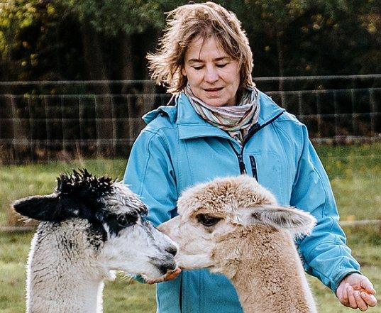 veerkracht-alpaca-therapie-dier-achterhoek