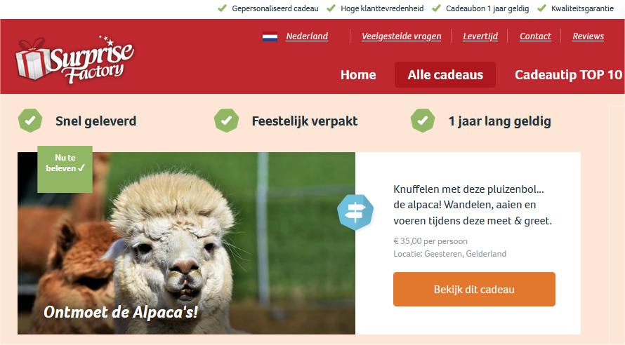 Meet and greet met alpaca's in de Achterhoek, ook cadeaubonnen