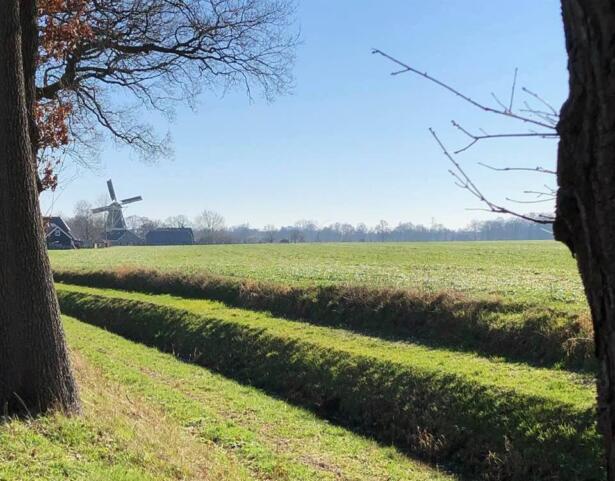 molen-geesteren-wandelen-gelderland